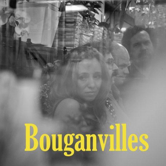 Bouganvilles